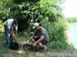 какая прикормка для рыбы нужна весной